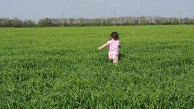 Un niño está jugando en el campo Una niña está caminando en la hierba alta Un niño en un campo del trigo almacen de metraje de vídeo