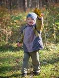 Un niño pequeño lanza las hojas en parque del otoño foto de archivo libre de regalías