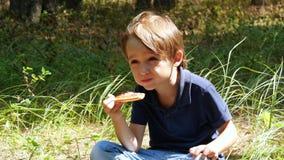 Un niño pequeño que se sienta en la hierba en el parque y que come la pizza almacen de video