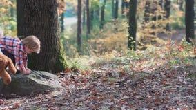 Un niño pequeño y una muchacha en la naturaleza, bosque, familia feliz del bosque que camina con el perro en la niña feliz del bo metrajes