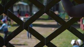 Un niño solo celebra una cerca y miradas en jugar de los niños Manos macras metrajes