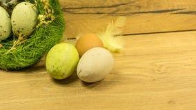 Un nid avec des oeufs de pâques en vert Images libres de droits