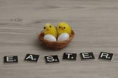 Un nid avec deux poulets et deux oeufs et le mot Pâques de bébé photographie stock