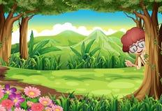 Un niño que oculta en el árbol dentro del bosque Fotografía de archivo libre de regalías