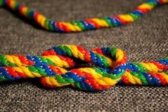 Un noeud coloré par arc-en-ciel Photo stock