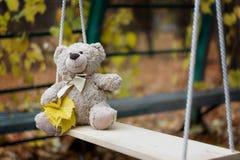 Un nounours d'ours de nounours Images libres de droits