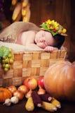 Un nouveau-né mignon dans une guirlande des baies et des fruits dort dans un panier Autumn Harvest Images stock