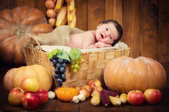 Un nouveau-né mignon dans une guirlande des baies et des fruits dort dans un panier Autumn Harvest Photo stock