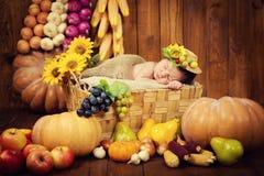 Un nouveau-né mignon dans une guirlande des baies et des fruits dort dans un panier Autumn Harvest Images libres de droits