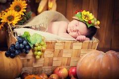 Un nouveau-né mignon dans une guirlande des baies et des fruits dort dans un panier Autumn Harvest Photographie stock