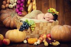 Un nouveau-né mignon dans une guirlande des baies et des fruits dort dans un panier Autumn Harvest Photographie stock libre de droits