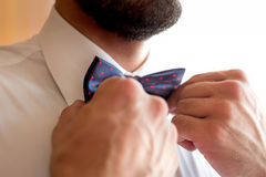 Un novio de moda lleva un bowtie Fotografía de archivo
