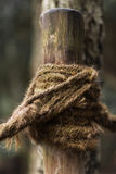 Un nudo de la cuerda fotos de archivo