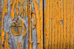 Un nudo en un árbol con los remanente de la pintura amarilla fotografía de archivo libre de regalías