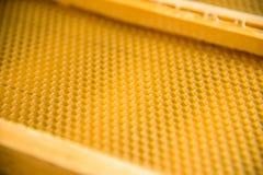 Un nuovo fondamento nel telaio di legno immagini stock libere da diritti