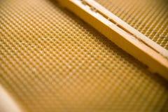 Un nuovo fondamento nel telaio di legno fotografia stock