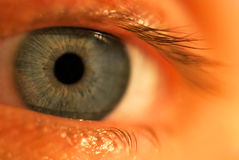 Un occhio azzurro Fotografie Stock Libere da Diritti