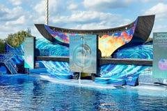 Un oceano, SeaWorld Orlando Orca Stadium Immagini Stock Libere da Diritti