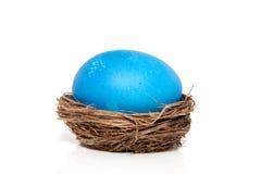 Un oeuf de pâques peint par bleu Photographie stock