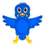 Un oiseau exotique bleu Images stock