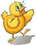 Un oiseau jaune Images stock