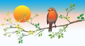 Un oiseau se reposant sur un branchement illustration stock