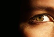 Un ojo verde hermoso Fotografía de archivo libre de regalías