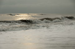 Un'onda lunga va alla riva Fotografia Stock