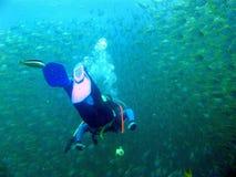 Andar a scuolae dell'operatore subacqueo Fotografie Stock