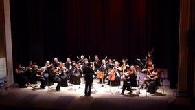 Un'orchestra da camera di quattro stagioni stock footage