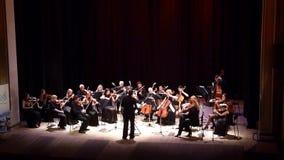Un'orchestra da camera di quattro stagioni video d archivio