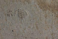 Un'orma in un marciapiede concreto Fotografie Stock