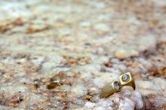 Anello sulla roccia salata Immagine Stock Libera da Diritti