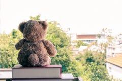 Un orsacchiotto marrone che si siede sul libro del mucchio fotografia stock