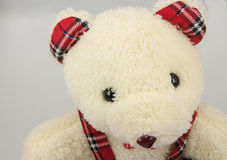 Un orsacchiotto riguarda il fondo grigio Fotografie Stock