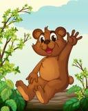 Un orso che si siede su un legno Fotografia Stock