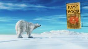 Un orso polare Fotografie Stock Libere da Diritti