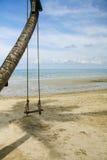 Un'oscillazione accanto al mare, Tailandia Immagine Stock