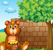 Un oso con la miel cerca de una pila de ladrillos Foto de archivo