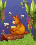 Un oso con tres abejas en el bosque ilustración del vector