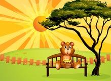 Un oso con un pote de miel que se sienta en el banco Imagenes de archivo