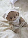 Un oso de peluche de la localización Fotos de archivo libres de regalías