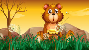 Un oso lindo que sostiene un pote de miel Imagenes de archivo