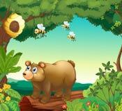 Un ours avec trois abeilles à l'intérieur de la forêt illustration stock