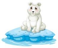 Un ours blanc au-dessus de l'iceberg Images stock
