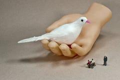 Un pájaro en la mano vale dos en el arbusto Imágenes de archivo libres de regalías