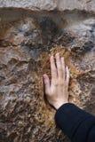 Un pèlerin bénit une croix avec la copie de main de Jésus, dans la référence 5 de Via Dolorosa photo libre de droits
