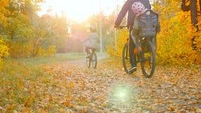 Un père avec deux enfants montant des bicyclettes par paysage de forêt d'automne le beau avec les arbres jaunes Le soleil lumineu clips vidéos