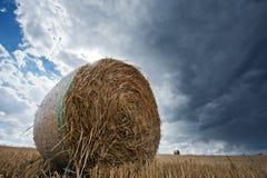 Un pacchetto della paglia in un campo di estate Fotografia Stock