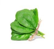 Un pacco di spinaci freschi isolato su fondo bianco con il percorso di ritaglio Fotografia Stock Libera da Diritti